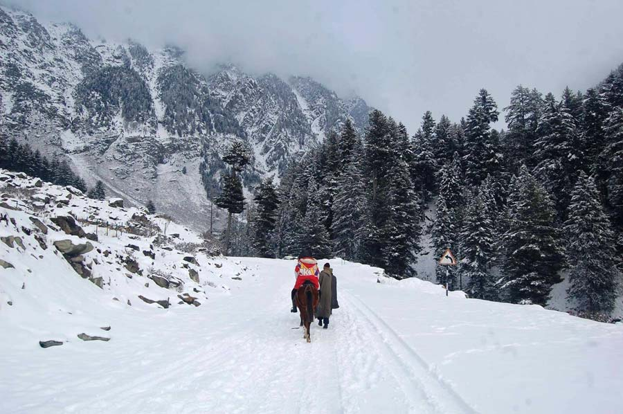 essay relating to first snowfall within kashmir images