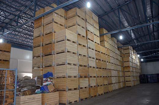 Inside view of Khuram's 10K MT CAS facility at IE Lassipora. KL Image: Bilal Bahadur
