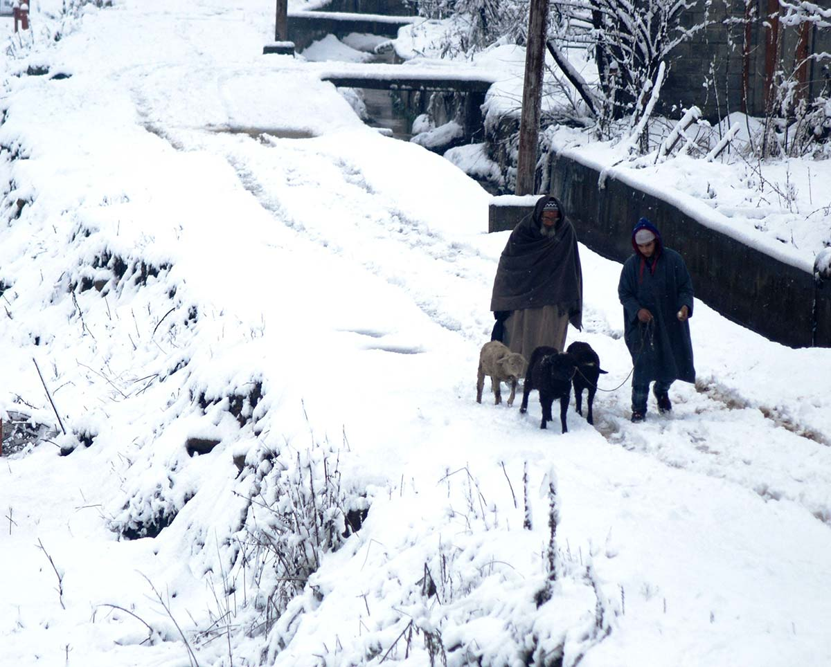 essay in initial compacted snow in kashmir images