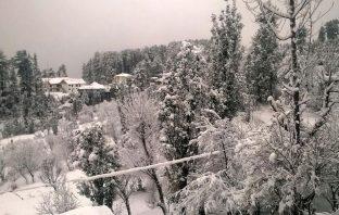 Fresh snowfall in South Kashmir's Qazigund. (KL Image by Special Arrangement)