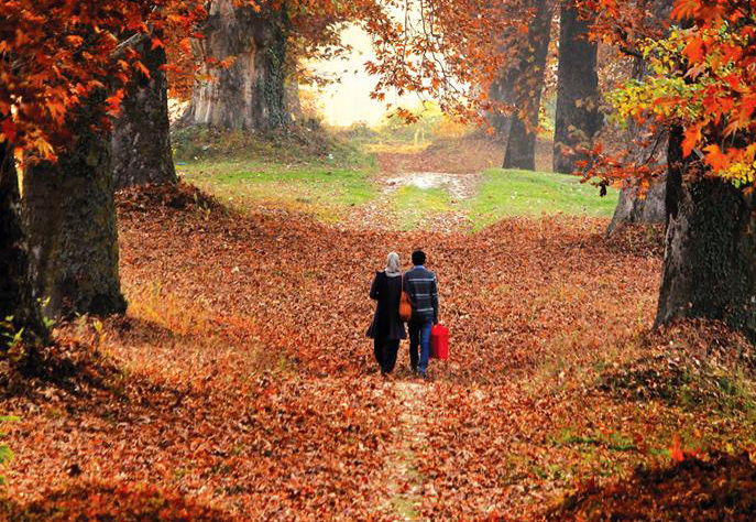 about autumn season